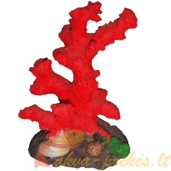 Dirbtinės uolos, koralai