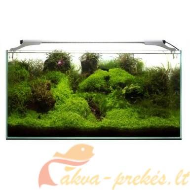 LED apšvietimas atviram akvariumui