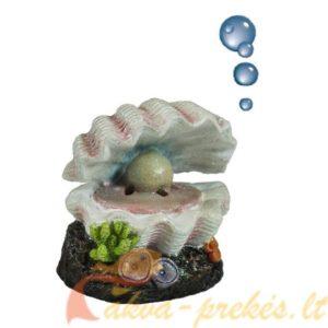 Burbuliuojančios dekoracijos